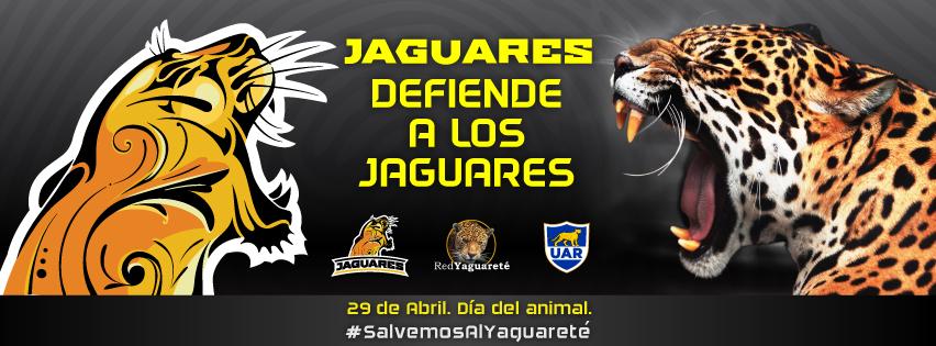 """Día del animal – """"Jaguares defiende a los jaguares"""""""